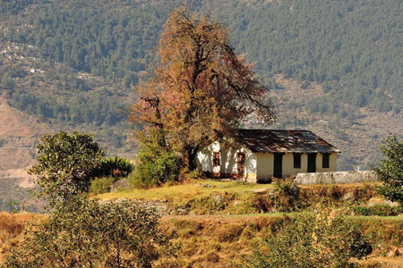 Village Homestay Uttarakhand