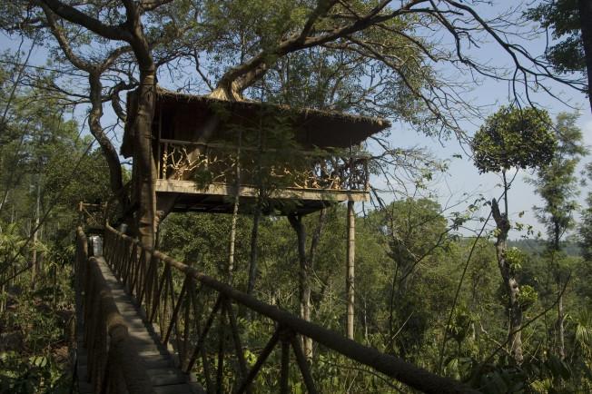 Tree houses in Bhimtal